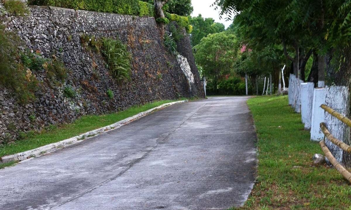 2239-SqM-Vacant-Lot-For-Sale-along-Busay-Transcentral-Highway-Cebu-City-Road