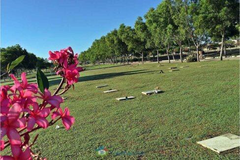 Bogo-Memorial-Park-Lawn-Lot