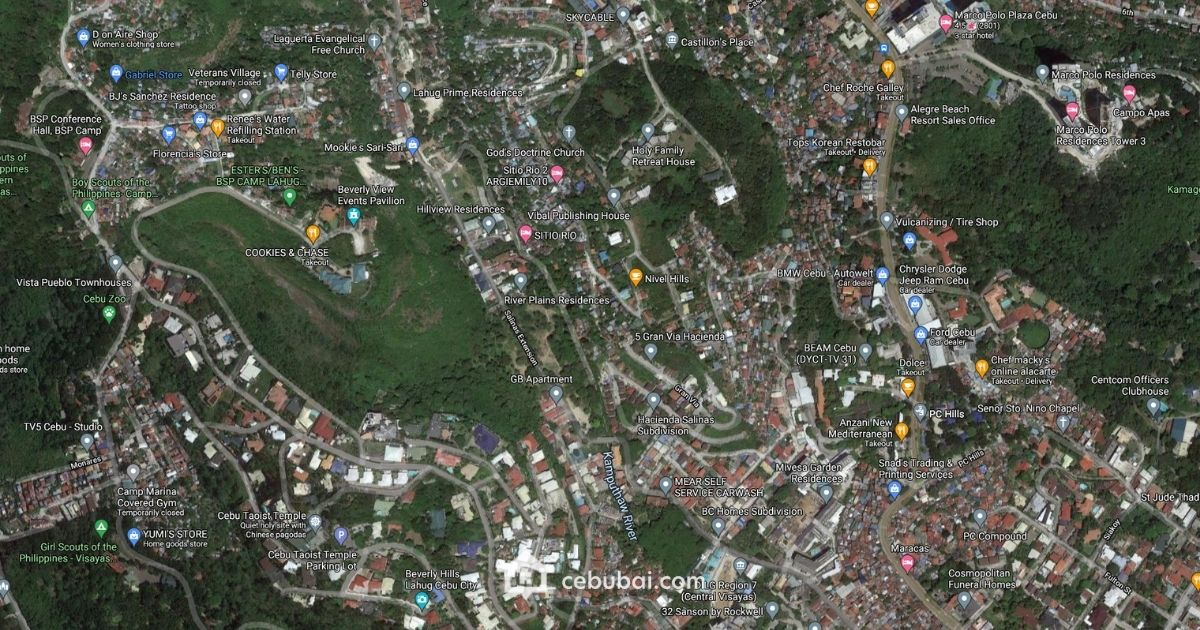 Commercial Lot For Sale in Salinas Drive Lahug, Cebu City